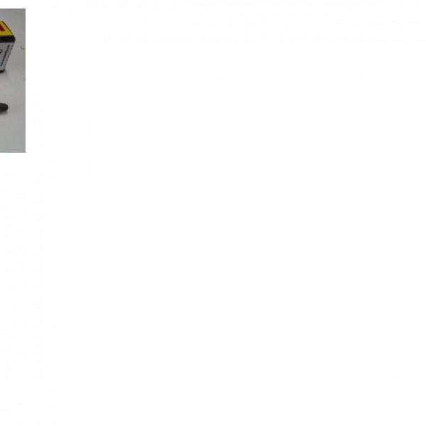 CALENTADOR 12V BOSCH 068-0250202001